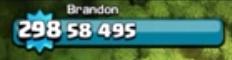 298-299 Level